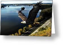 Eagle Over Mississippi  Greeting Card