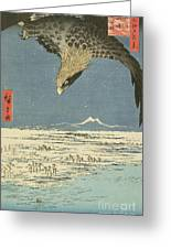 Eagle Over One Hundred Thousand Acre Plain At Susaki Greeting Card