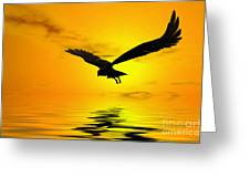 Eagle Sunset Greeting Card by John Edwards