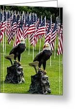 Eagles And Flags On Memorial Day Greeting Card