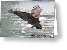 Eagle's Grasp Greeting Card
