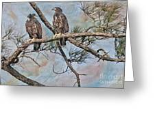 Eaglets In Oil Greeting Card