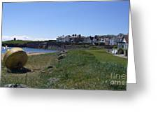 Earlsferry Harbour Greeting Card
