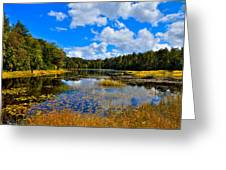 Early Autumn At Fly Pond - Old Forge New York Greeting Card