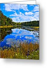 Early Autumn At Fly Pond - Old Forge Ny Greeting Card