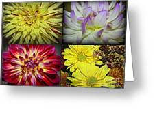 Early Autumn Blossoms Greeting Card