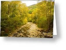 Early Autumn On Seneca Creek Wv Greeting Card