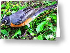Early Bird Catches The Worm Greeting Card