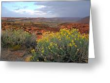 Early Evening Landscape At Arches National Park Greeting Card