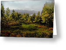 Early Fall On Kebler Pass Greeting Card