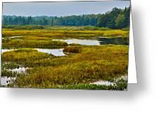 Early Fall On The Moose River - Old Forge New York Greeting Card by David Patterson