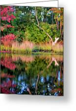 Early Fall Reflection Greeting Card