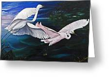 Early Flight Greeting Card by Karin  Dawn Kelshall- Best