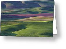 Early Light In The Palouse Greeting Card