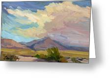 Early Morning At Thousand Palms Greeting Card