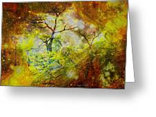 Early Morning Cypress Abstract Greeting Card