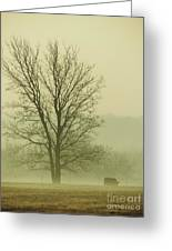 Early Morning Fog 016 Greeting Card