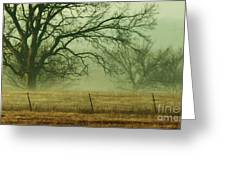 Early Morning Fog 019 Greeting Card
