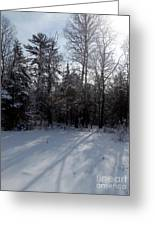 Early Morning Shadows Greeting Card by Steven Valkenberg