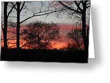 Early One Morning IIi Greeting Card