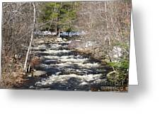 Early Spring Thaw Greeting Card