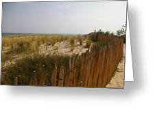 Early Summer Dunes Greeting Card
