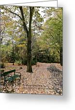 Earth Day Special - Bench In The Park Greeting Card