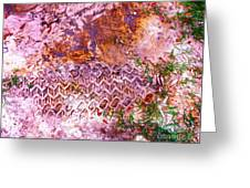 Earth Map 1 Greeting Card by Chuck Taylor