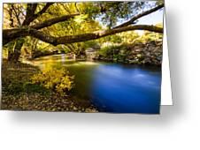 East Canyon Creek Greeting Card