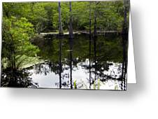 East Texas Cyprus Pond Greeting Card