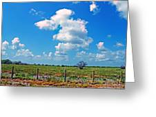 East Texas View Greeting Card