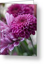 Easter Bouquet Flowers Mums And Dahlia Greeting Card