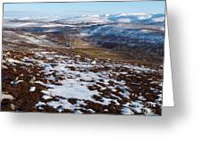 Eastern Cairngorms Greeting Card