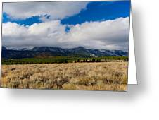 Eastern Sierras 24 Greeting Card