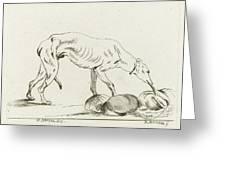 Eating Dog, D. Merrem Greeting Card