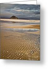 Ebb Tide Greeting Card