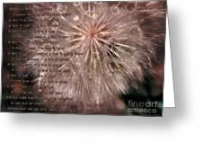 Ecclesiastes Seasons Greeting Card