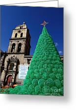 Ecological Christmas Tree Greeting Card