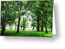 Edgewater Park Forest Greeting Card