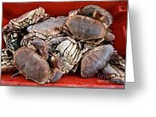 Edible Crabs  Greeting Card