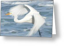 Egert In Flight Detail Greeting Card