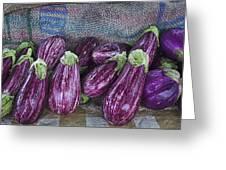 Eggplants Greeting Card