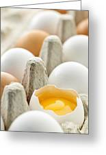 Eggs In Box Greeting Card
