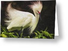 Egret 12 Greeting Card