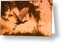 Egret Flying Greeting Card