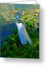 Egret In Blue Greeting Card