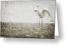 Egret In Rain Greeting Card