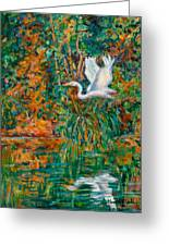 Egret Reflections Greeting Card