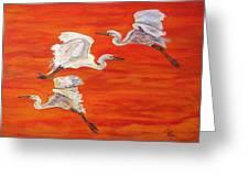 Egrets In Flight Greeting Card