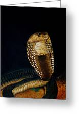 Egyptian Cobra Greeting Card